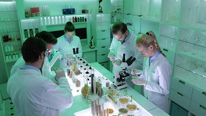 Co warto wiedzieć na temat diagnostyki genetycznej?